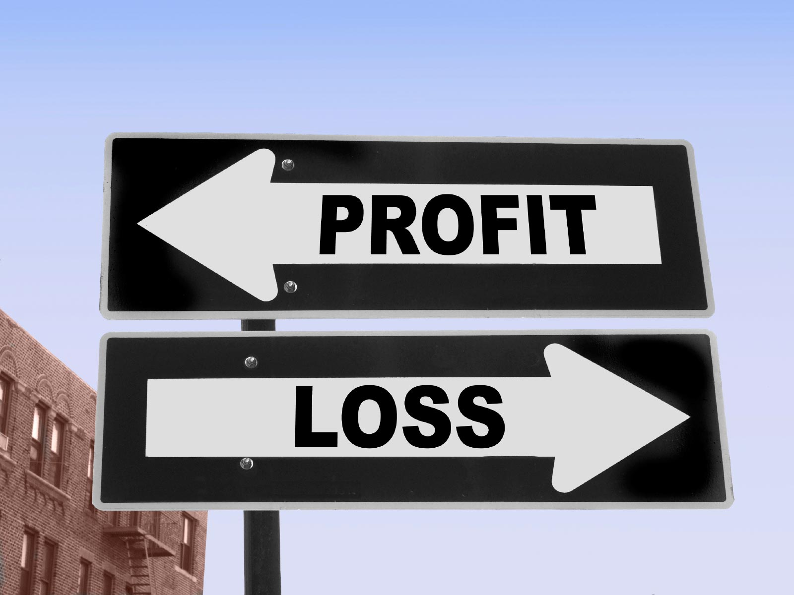Profit and Loss Statement in Word