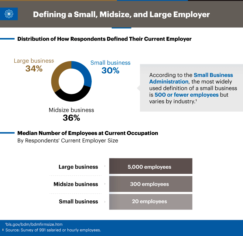Infographic showing distribution of how respondents defined their current employer