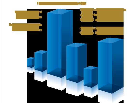 Flexibilidad de inversión